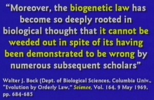 Biogenetic law has been shown to be nonsense.